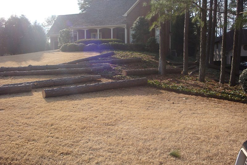 Logs left on a customer's lawn from another company.