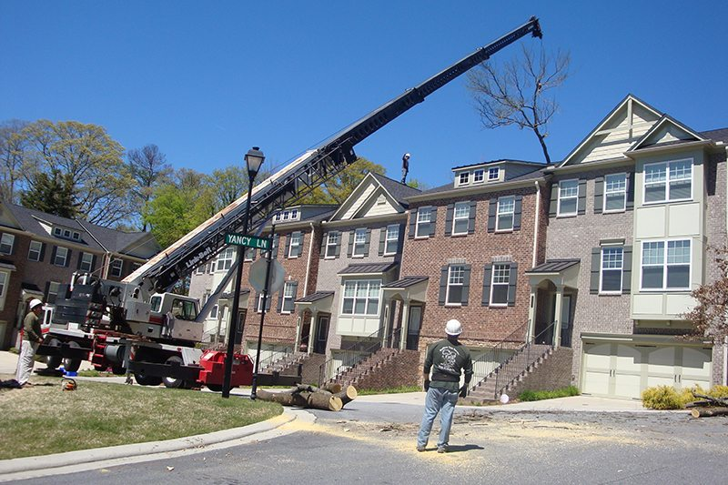 90 ton crane work to remove a tree from a difficult space in the back of the townhomes.